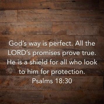4a590-psalm1